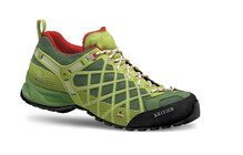 Salewa Men's Wildfire chlorophil/cactus